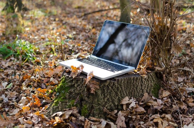 laptop isolated working